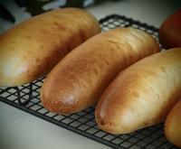 ルヴァンのコッペパンと新しい仲間 - 日々パン作り