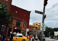 Baker & Co - ∽ I Love New Yorkie ∽