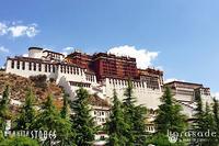 チベットレポート~寺院編~ - すぐる石放題