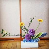 夏のお花 - 歌う寺嫁 さちこの つれづれ精進茶和日記
