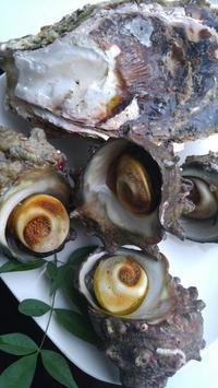 隠岐の島のサザエと牡蠣 - 料理研究家ブログ行長万里  日本全国 美味しい話