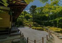 金福寺のさつき - 鏡花水月