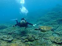 サンゴの上で・・バッチリでしょ!? - 八丈島ダイビングサービス カナロアへようこそ!