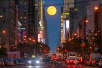 Do you like Strawberry Moon? - Triangle NY