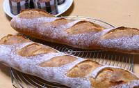 バゲット - ~あこパン日記~さあパンを焼きましょう