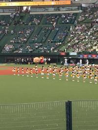 チアダンス@西武ドーム - おもろかったら、ええねん