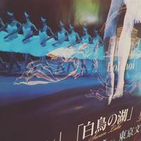 Swan lake * Bolshoi ballet @ 東京文化会館 - Maison de Chapeau*Ulala Koroku/メゾンドシャポー・ウララコロク