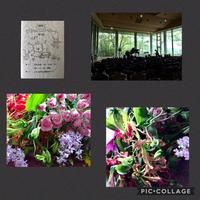 ぴよっこコンサート - Rico 花の教室