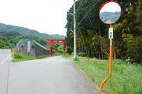 大弛峠~柳沢峠へ再トライ-3 2017年6月10日 - 暗 箱 夜 話 【弐 號】