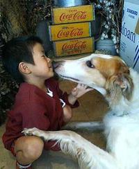 モカちゃん、生きてれば15歳 - luna piena  ~大人の着こなし術と犬猫のこと~