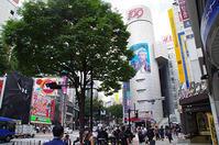 6月15日(木)今日の渋谷109前交差点 - でじたる渋谷NEWS