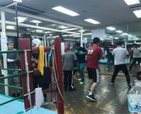 試合が続々 - 本多ボクシングジムのSEXYジャーマネ日記