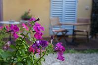 フィレンツェのB&Bの朝食拝見〜B&Bオルティ - フィレンツェ田舎生活便り2