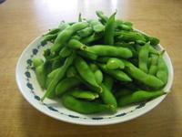枝豆の季節6/17 - つくしんぼ日記 ~徒然編~