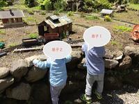 はじめまして - 子どもと暮らしと鉄道と