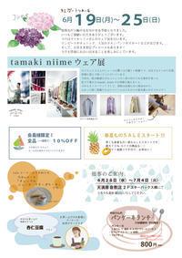 服のイベントは明日から★ - 紅茶とうつわの店