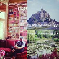 PARIS -  Flower and cafe 花空間 ivory (アイボリー)