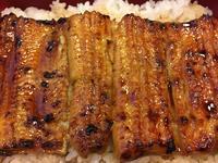 鰻 - http://fukita.exblog.jp