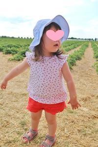 またまたイチゴ狩り☆ - ドイツより、素敵なものに囲まれて②