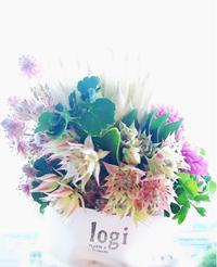 誕生日 - ~Have a lovely time~