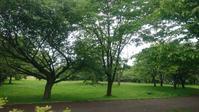 早朝の森町オニウシ公園が日課に - 工房アンシャンテルール就労継続支援B型事業所(旧いか型たい焼き)セラピア函館代表ブログ