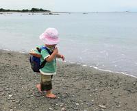 1歳組 ある日の葉山公園の活動 - 青空共同保育 つくしとたね