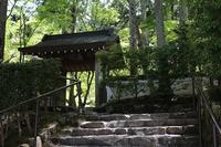 京都へ13(大原-5)2017.GW - 風の中で~