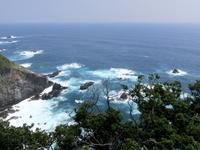 四国旅行<2> - ニッキーののんびり気まま暮らし