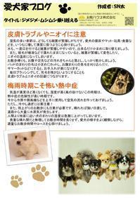 愛犬家住宅太陽ハウス市川 - 新松戸 建築 「創ってます!」太陽ハウス
