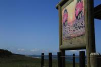 旅のキロク5月嗚呼日本海!その1 - 山猫を探す人Ⅱ