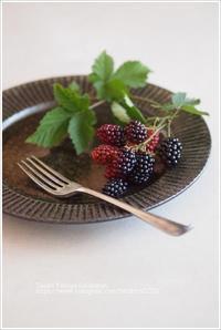 鉄釉鎬リム皿 - なづな雑記