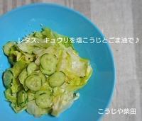 塩こうじ+お好みのオイル+酢+コショウで野菜をあえてサラダを作ります - おお!味噌便り 飛騨高山のお味噌屋のブログ