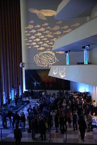 キース・リチャーズの娘も活躍ブランパンが国連海事海洋法課(DOALOS)とこのレセプションを共同開催 - ブランド腕時計ガイド