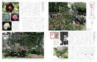 雑誌『マイガーデン』83号に掲載されました。 - 駒場バラ会咲く咲く日誌