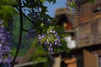白川郷・飛騨高山旅行2日目(2017/5/21)其の⑦ - 南の気ままな写真日記