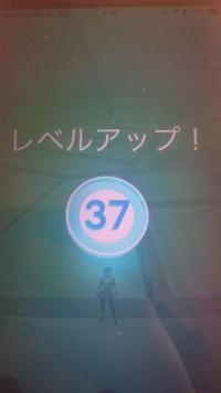 ポケモンGO Lv37到達 - Yossi Survivor MAX