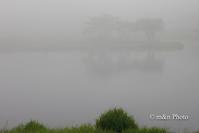 霧の向こうがわ - 季節のおくりもの