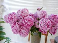 集英社「OurAge」連載コラム6月 - la fleur ラ・フルール