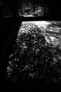 少し寂しい昼下がりの南口 - Yoshi-A の写真の楽しみ