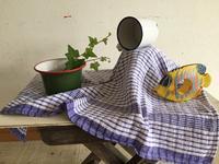 アトリエMIWA 8月のレッスン日程 - ミワの徒然日記