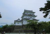 小田原城とあじさい・花菖蒲まつり - Bamboobooのひとりごと