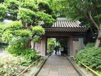 鎌倉報国寺 - そのひそのとき