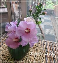 夏を彩るムクゲの花 - 恋子のガーデニング日記