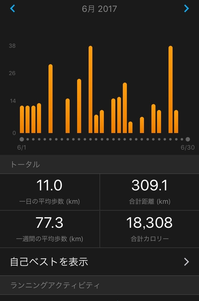 練習記録 6月〆 - いつの日か村岡ダブルフル100kmでサブ10目指す勇者の記録