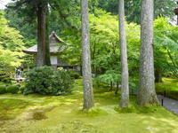 京都市 25年ぶりの三千院は・・・ - 転勤日記