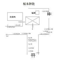 桜木神社 - 社叢見守り隊