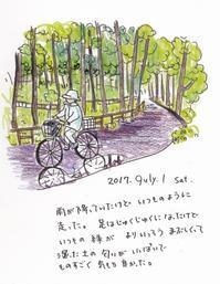 雨の石神井公園 - 一天一画   Yuki Goto