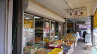 雁木型商店街 - 路地裏統合サイト【町角風景】
