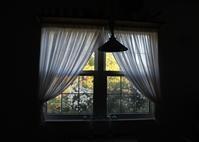 窓からの景色 - ペコリの庭 *