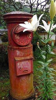 蓮&睡蓮 と 涅槃像 - ゆる~く、生きていこっ。